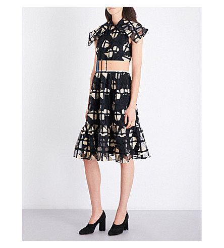 CO Floral-embroidered organza dress (Black