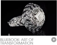 BlueBook: Art of the Transformation