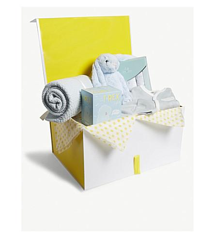 SELFRIDGES Baby boy medium hamper (Multi