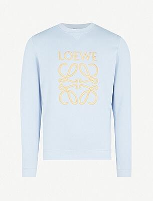 A mens Loewe top