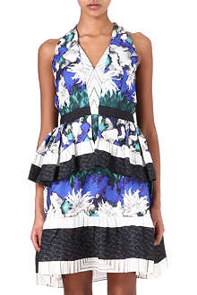 PETER PILOTTO Amanda printed silk-blend dress