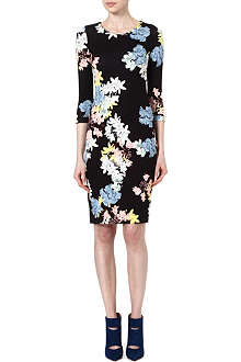 ERDEM Allegra floral print dress