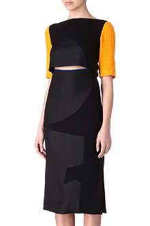 ROKSANDA ILINCIC Colour-block cut-out dress