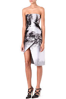MARY KATRANTZOU Misty Maria-print bustier petal skirt dress