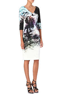 MARY KATRANTZOU Misty Maria-print v-neck dress