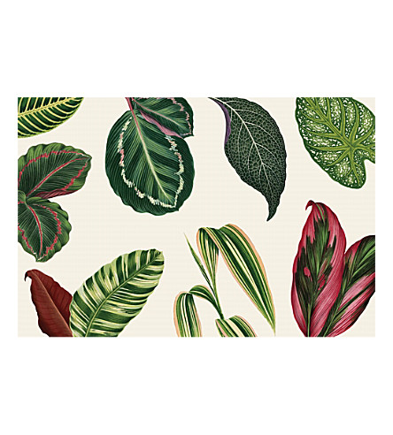 HESTER & COOK Tropical leaves paper placemats (set of 30)