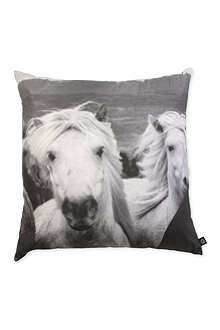 BY NORD Icelandic Horses cushion