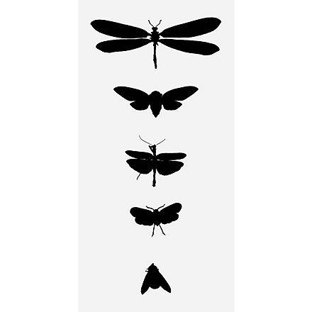 TATTLY Bug study temporary tattoos