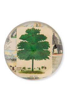 JOHN DERIAN Sugar Maple dome paperweight
