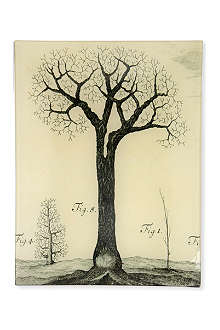 JOHN DERIAN Tree Fig rectangular tray