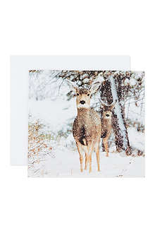 THE GREAT BRITISH CARD COMPANY Winter Deer cards