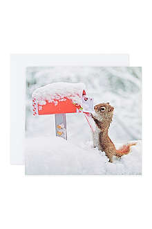 THE GREAT BRITISH CARD COMPANY Christmas Post cards