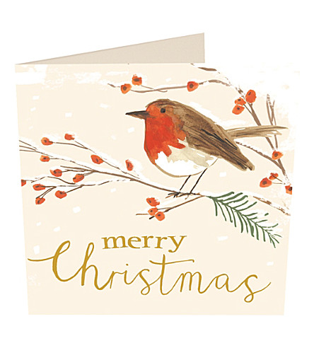 CARD Robin on branch Christmas cards pack of six