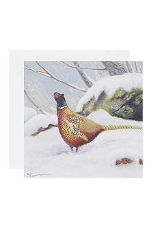MUSEUMS + GALLERIES Mg pheasant in snow cello 5