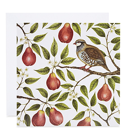 MUSEUMS + GALLERIES Partridge in a pear tree Christmas card 5-pack