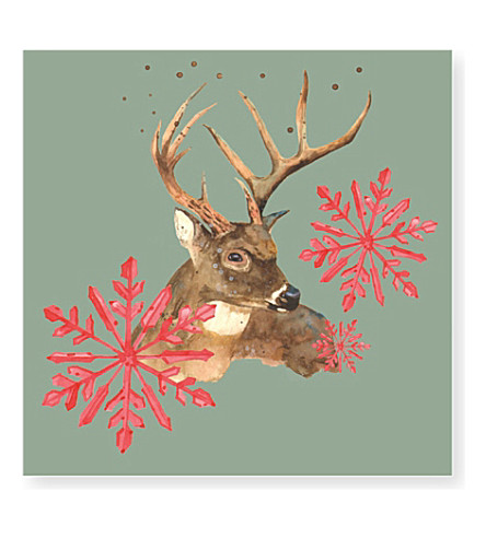 museums galleries british wildlife christmas cards