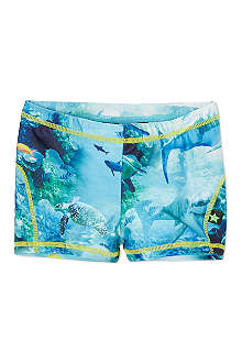 MOLO Shark swim trunks 1-10 years