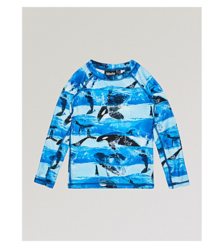 MOLO Neptune Orca T-shirt 3-12 years (Blue
