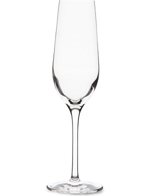 DARTINGTON Orbit crystal champagne flute