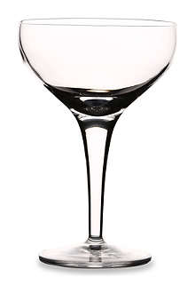 SELFRIDGES Michelangelo champagne glass