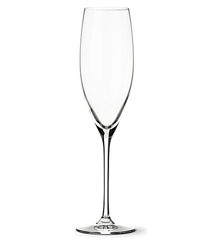 DARTINGTON Wine Master flute champagne glasses pair