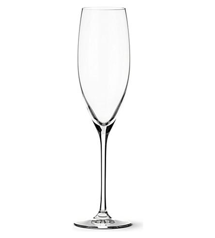 DARTINGTON 葡萄酒大师长笛香槟眼镜对