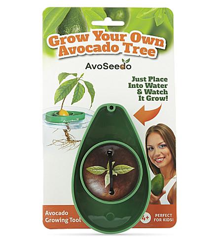 AVOSEEDO Avocado growing tool