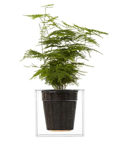 BOSKKE Boskke cube plastic planter 16cm