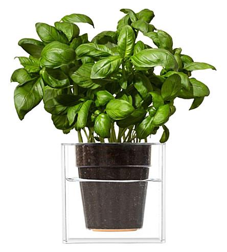 BOSKKE Boskke cube plastic planter 12.2cm