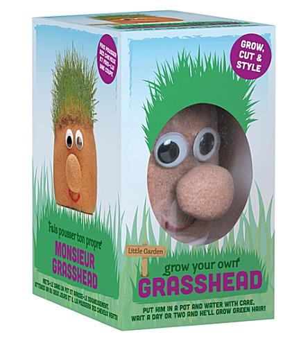 TOBAR Mr grasshead
