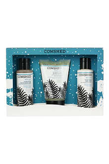 COWSHED Wild Cow trio gift set