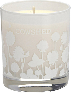 COWSHED Horny Cow seductive room candle
