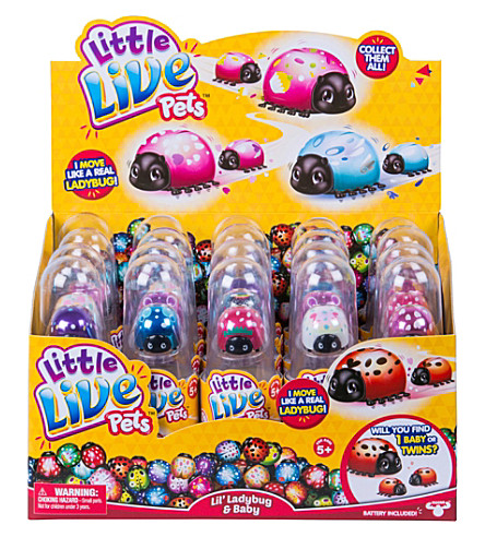 LITTLE LIVE PETS Little Live Pets Lil Ladybug Single Pack