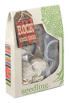 SEEDLING Lets Rock Geode kit