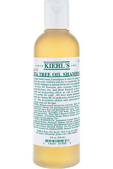 KIEHL'S Tea Tree Oil shampoo 250ml