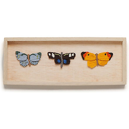 OEUF Butterfly shadowbox