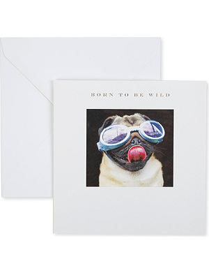 SUSAN O'HANLON Born To Be Wild Pug In Goggles card