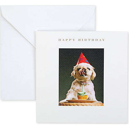 SUSAN O'HANLON Dog In Party Hat Happy Birthday card