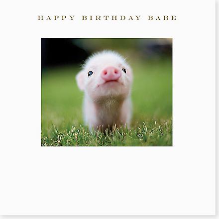 SUSAN O'HANLON Happy Birthday Babe Pig card