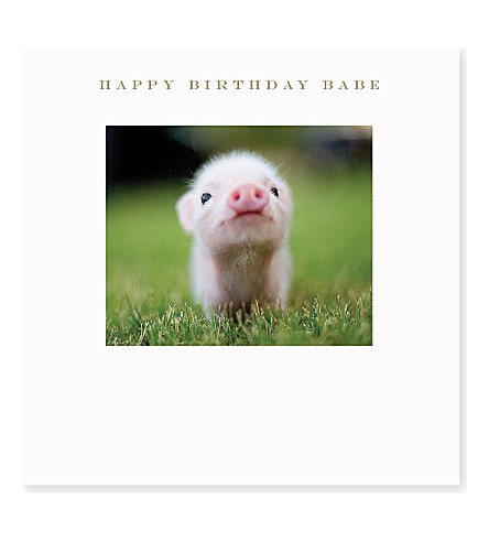 SUSAN O'HANLON Happy Birthday Babe Pig card