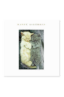 SUSAN O'HANLON Happy Birthday Kittens card