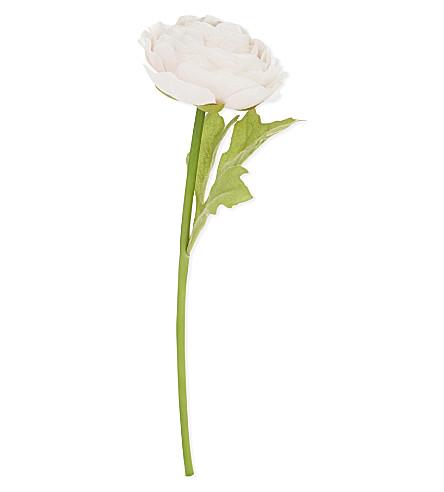 ABIGAIL AHERN Pale pink ranunculus stem