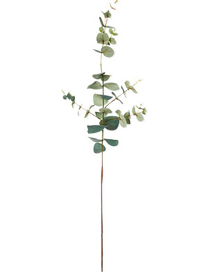 SIA HOME FASHION Eucalyptus stem