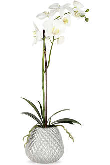 SIA HOME FASHION Phalaenopsis artificial plant in pot