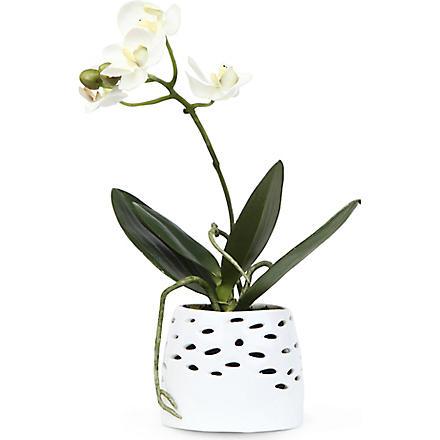 SIA HOME FASHION Mini Phalaenopsis artificial flower pot 20cm