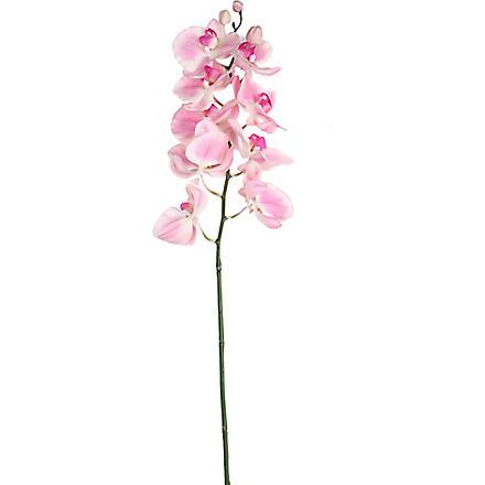 SIA HOME FASHION Phalaenopsis stem