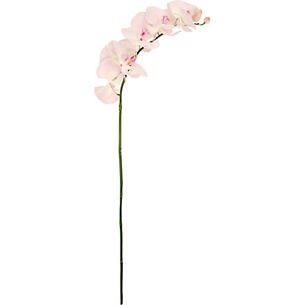 SIA HOME FASHION Phalaenopsis Orchid stem 101cm