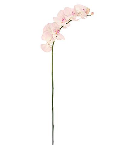 SIA HOME FASHION Phalaenopsis Orchid stem 101cm