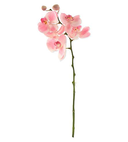 SIA HOME FASHION Phalaenopsis flower stem