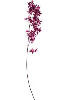 SIA HOME FASHION Orchid oncidium stem 118cm